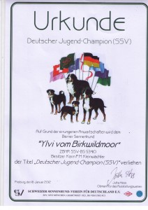 Ylvi Jugendchampion