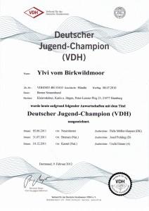 jugend-champion VDH